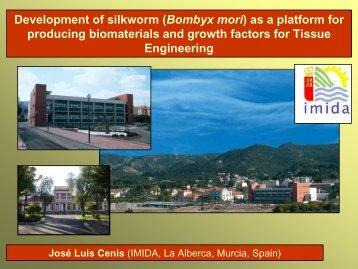 Presentation Dr Cenis Anadon - BACSA