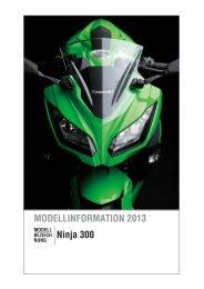 Ninja 300 - os-motors