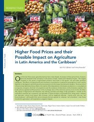 Higher Food Prices and their Possible Impact on Agriculture