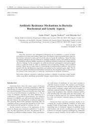 Antibiotic Resistance Mechanisms in Bacteria: Biochemical and ...