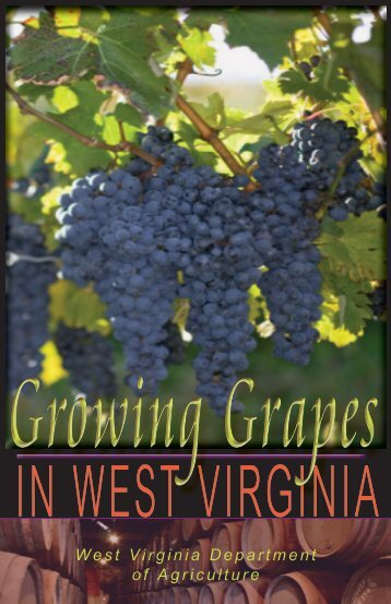 Growing Grapes in WV - West Virginia Department of Agriculture