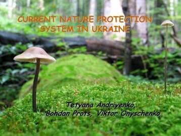 Ecological network of Ukrainian Polisia - The Carpathian EcoRegion ...