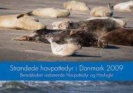 Strandede havpattedyr i Danmark 2009 - Fiskeri- og Søfartsmuseet