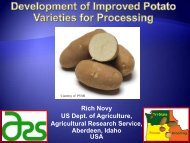 Tri-State Potato Variety Development Program Update - Associação ...