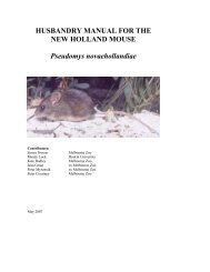 HUSBANDRY MANUAL FOR THE NEW HOLLAND MOUSE ...