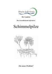 Schimmelpilze - Rhein-Erft-Kreis
