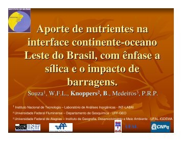 W.F.L. Souza - Instituto do Milênio Estuários