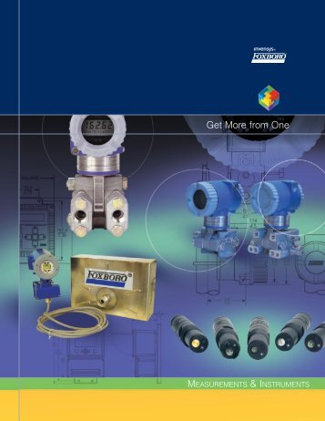 Overview brochure - FOXBORO ECKARDT GmbH
