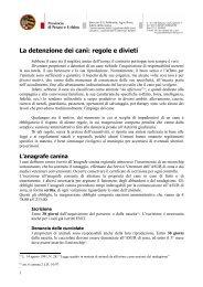 La detenzione dei cani: regole e divieti - FidoMicio
