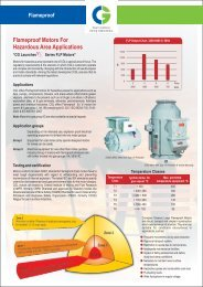 Flameproof motors for hazardous areas for applications