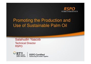 Promoting the Production and Use of Sustainable Palm Oil