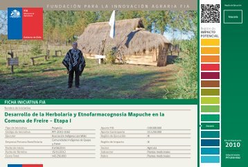 Desarrollo de la Herbolaria y Etnofarmacognosia Mapuche en ... - Fia