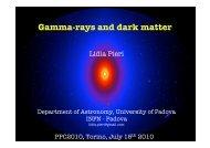 Gamma-rays and dark matter - PPC 2010 - Infn
