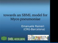 towards an SBML model for Myco pneumoniae