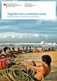 Together for a common cause - International Climate Initiative