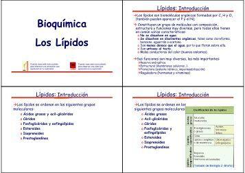 Bioquímica Los Lípidos