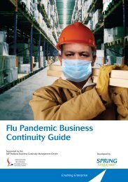 Flu Pandemic Business Continuity Guide - Spring