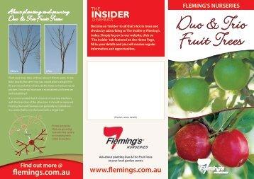 plant aDUO - Fleming's Nurseries