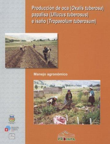 Produccion de oca, papalisa e isano. Manejo agronomico.pdf