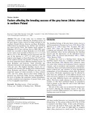 Factors affecting the breeding success of the grey heron (Ardea ...