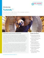 TurbinAL High-Flow CO2 Purge System for Turbine Generators from ...