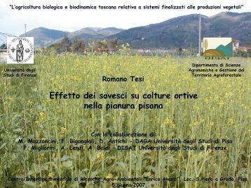 (Az. Bonamici – S. Giuliano T. - Pisa) - R. Tesi - Enrico Avanzi