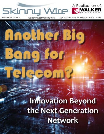 Innovation Beyond the Next Generation Network - Walker and ...