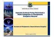 Gilberto Hollauer - PPE - Programa de Planejamento Energético