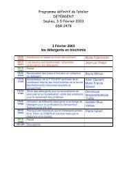 Programme définitif de l'atelier DETERGENT Saulieu, 3-5 ... - LISM
