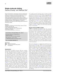 Single-molecule folding - Xiaowei Zhuang - Harvard University