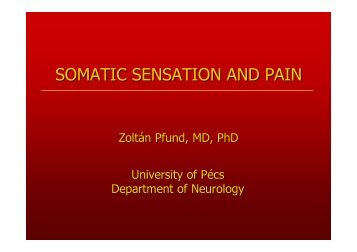 Somatic sensation and pain