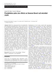 Precipitation pulse size effects on Sonoran Desert soil microbial crusts