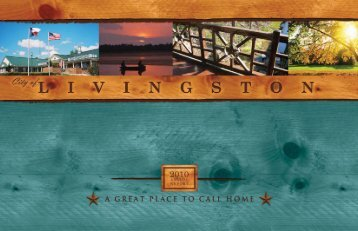 2010 Annual Report - City of Livingston