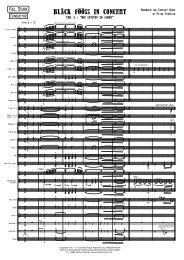 Bläck Fööss in Concert - Teil 2 (Demo Score)