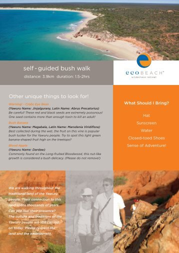 self - guided bush walk - Eco Beach