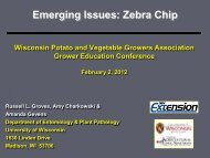 Emerging issues: Zebra Chip