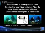 i. presentation de la pam fluorimetrie