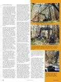 Cooper Forestry - Forestry Journal - Page 2