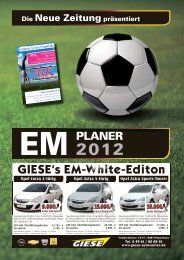 em planer 2012