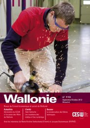 Wallonie n°113 - Conseil économique et social de la région wallonne
