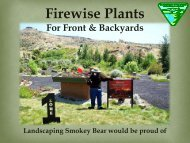 Firewise Plants for the Front and Backyards