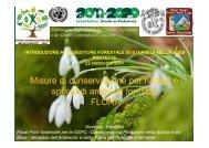 Tartaglini - Parco Nazionale del Gran Sasso e Monti della Laga