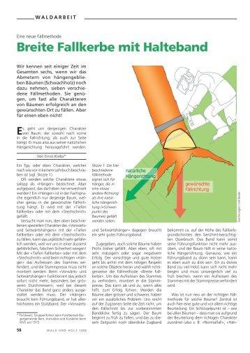 Breite Fallkerbe mit Halteband - Waldwissen.net