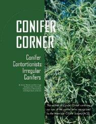 Irregular conifers - Department of Horticulture - Michigan State ...