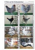 V-Tiere auf der Frohnatalschau - Antwerpener Bartzwerge - Seite 2