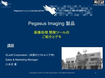 Pegasus Imaging - XLsoft.com - XLsoft Corporation