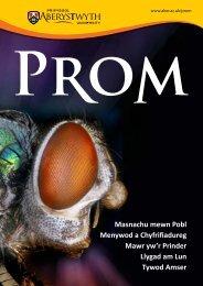 PROM-2013-Cymraeg