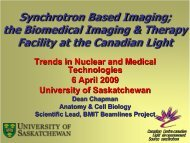 Synchrotron Based Imaging - Department of Physics and ...