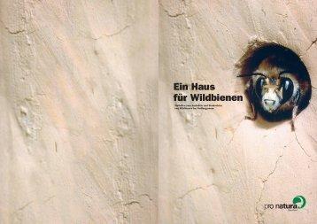 Ein Haus für Wildbienen - Stiftung Wirtschaft und Ökologie SWO