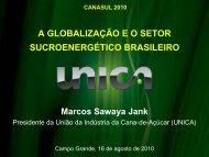 a globalização eo setor sucroenergético brasileiro - OPEC
